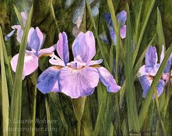 Iris Botanical Watercolor Nature Art Original Garden Landscape Painting