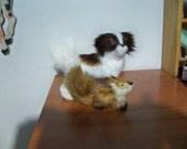 furry dog lost  his furry fox friend