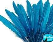 Blue Duck Feathers, 1/4 lb - TURQUOISE BLUE Duck Cochettes Loose Wholesale Feathers (Bulk) : 144