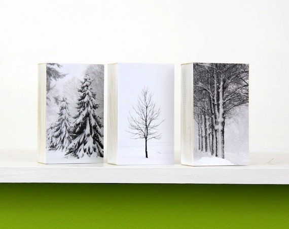 https://www.etsy.com/listing/207574339/christmas-decor-winter-white-trees-in?ref=teams_post