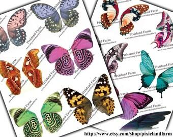 Fairy Wings clip art printable digital download