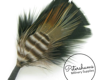 Men's Black Hat Feather Millinery Mount (Turkey & Pheasant Feathers)