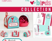 Love Birds Valentines Mailbox Template - Printable PDF - turquoise pink red birds love clouds stripes dots