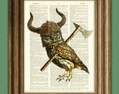 Gor the Viking Owl is ready to storm the ramparts illustration beautifully upcycled dictionary page book art print