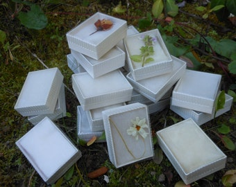 Specimen or jewelry boxes to hold delicate specimen, two dozen new, old stock