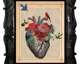 Anatomical HEART Art Print - Heart Anatomy Birds Cardinal Flowers poster - heart flowers art on antique dictionary music or book page