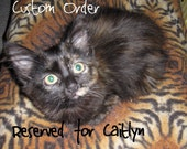 Crocheted Pet Blanket - RESERVED for Caitlyn