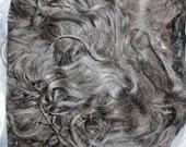 Raw Icelandic Wool Locks / Felting Supply / Fiber Artist
