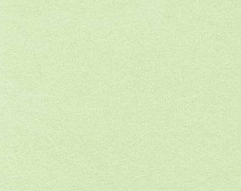 Sage Light Green 2-ply  Flannel Kaufman Quilt Fabric by the 1/2 yard
