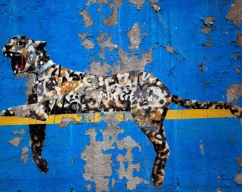 Banksy Canvas (READY TO HANG) -Cheetah - Multiple Canvas Sizes