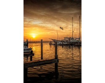 Aransas Pass Harbor at Sunrise with Fishing Boats and Pelican at  in Texas on the Gulf of Mexico No.0635 A Nautical Seascape Photograph