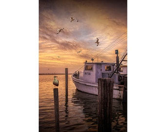 Fishing Boat with Gulls at Sunrise at the Aransas Pass Harbor in Texas on the Gulf of Mexico No.0580 A Nautical Seascape Photograph