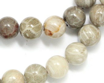 Fossilized Coral Beads - 8mm Round