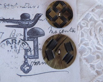 Antique Buttons on Card Celluloid with Carved Designs Set of 2 Free Shipping