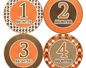 1st Year Baby Month Stickers, PLUS Just Born, Baby Boy Milestone Stickers, Monthly Bodysuit Stickers, Arrow Brown Orange White Boho 082B
