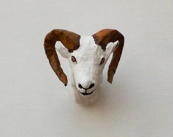 Dall Sheep Head Trophy Faux Taxidermy
