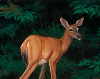oil painting deer native