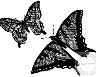 2 Butterflies Art Print