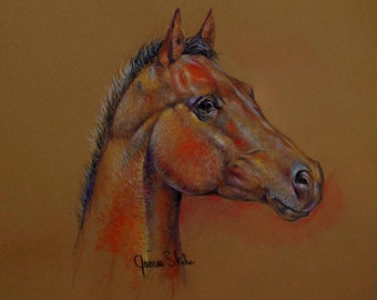 Forever Young An Original Pastel Horse Drawing