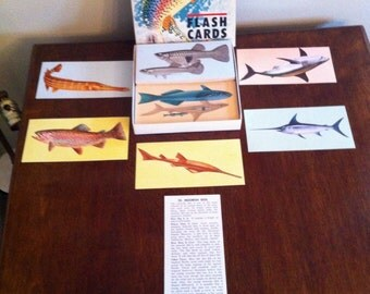 Teach me about fishes flash cards