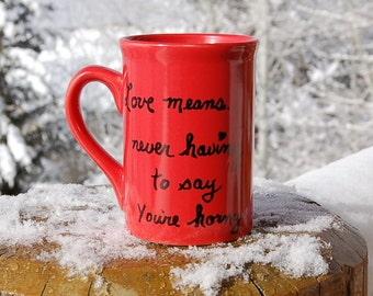Love Means Mug  - Never Having to say You're Horny Love Story