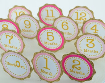 Pink and Gold First Birthday Banner, First Year Photo Banner, First Year Banner, 1st Birthday, Glittered Gold and Pink Ombre, c-1169