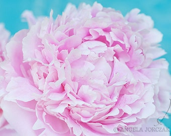 Peony Photo Digital Instant Download