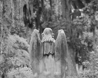 We only know them when they are gone - 8 x 10 Fine Art Photography - Southern Photography - Black & White Photography
