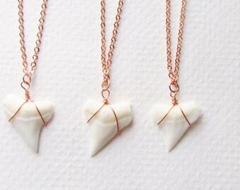 14 Karat Rose Gold Shark Tooth Necklace