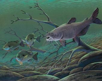 Catfish Print by Doug Walpus, Freshwater fishing, Wildlife Art, Fish Print, Wall Decor, Home Decor, Collectible, Cabin Decor