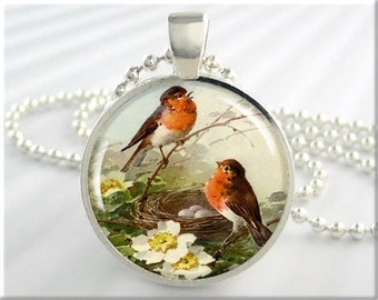 Bird Necklace Jewelry Red Breasted Robin Nesting Birds Resin Pendant Charm (675RS)