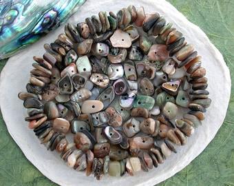 Abalone Beads, Abalone Shell Chip Beads, Abalone Nugget Beads, Paua Shell Beads, Abalone Shell Chips  SHL-271