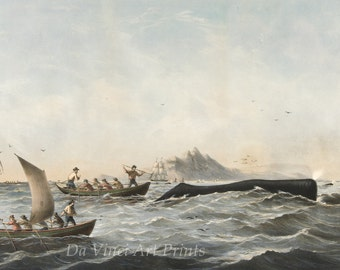 Images of America: Sperm Whaling No. 1, 'The Chase', 1859 - Fine Art Print Reproduction