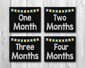 Baby's first year, baby monthly photo prop, 12 files, instant download