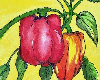 Peppers Watercolor Print