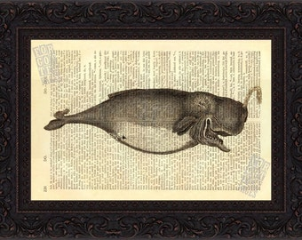 Whale Print 3  - Very Old Whale Antique engraving Print on  Repurposed 1880's Dictionary Page mixed media  digital wall art home and living