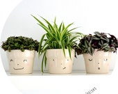 set of 3 Hand-painted smiling flowerpots