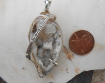NEW Fossilized Seashell Silver Wrapped Pendent