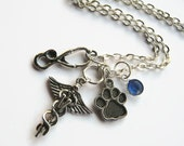 Veterinarian Necklace, Veterinary Doctor Jewelry, Caduceus Personalized Birthstone Necklace, Vet Tech, Choose Your Length, Silver