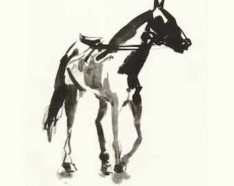 Intaglio Horse print