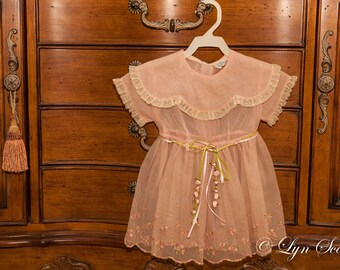 Child's Dress Photo-  Clothing, photography, dress, antique, art, fine art print, pink, girl, vintage