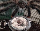 RESERVED - Tarantula Web and Fang Locket