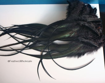 Long Feathers Black XL Rooster Saddle Feathers Long Black Feathers XL Feathers Real Feathers for Crafts Black Craft Feathers, 12 9-12inch