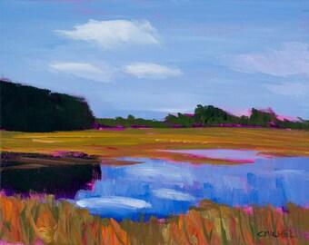 Maine Landscape Scarborough Marsh