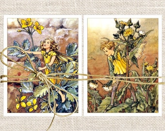Fairy Cards Blank Note Cards, Cicley Barker Flower Fairy Note Cards, Set of 10 Cards and Envelopes