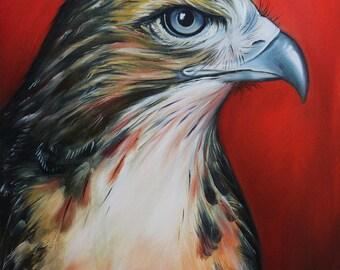 Hawk poster print