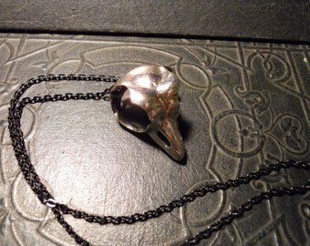 Metal Owl Skull Replica on Black Chain