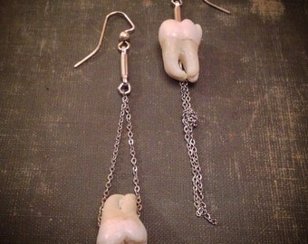 Mismatched Human Tooth Earrings