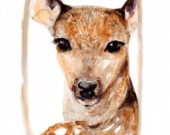 Deer - Print - 8 x 10