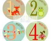 Baby Monthly Milestone Bodysuit Stickers - Printable - Animal Friends - Months 1-12